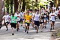 2nd Annual Jewell 5K Trail Run/Walk